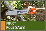 Top-Rated & Best-Selling Pole Saws