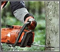 Homeowner Chainsaw Buyer's Guide