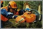 How to Pick the Perfect Professional Chain Saw